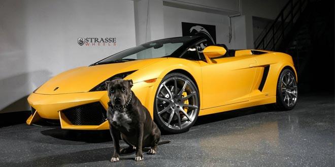 Lamborghini Gallardo Spyder примерил диски Strasse Wheels