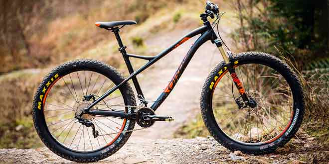Разновидности велосипедов Орбеа