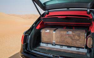 Ящик с экипировкой для соколиной охоты из пробкового материала