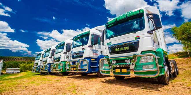 Компания Imperial Cargo из ЮАР закупила 60 тягачей MAN