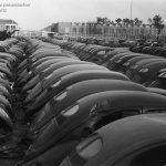 Фото   Новые VW Beetle ждут доставки покупателям