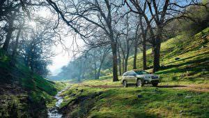 Фото   Полноприводный универсал Subaru Outback 2018