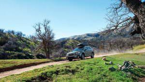 Фото   Внедорожный универсал Subaru Outback 2018