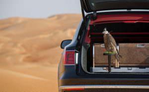 Сокол балобан и Bentley Bentayga Falconry