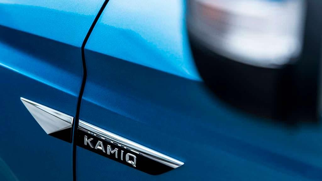 Логотип на дверях Skoda Kamiq